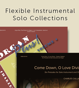 Flexible Instrumental Solo Collections